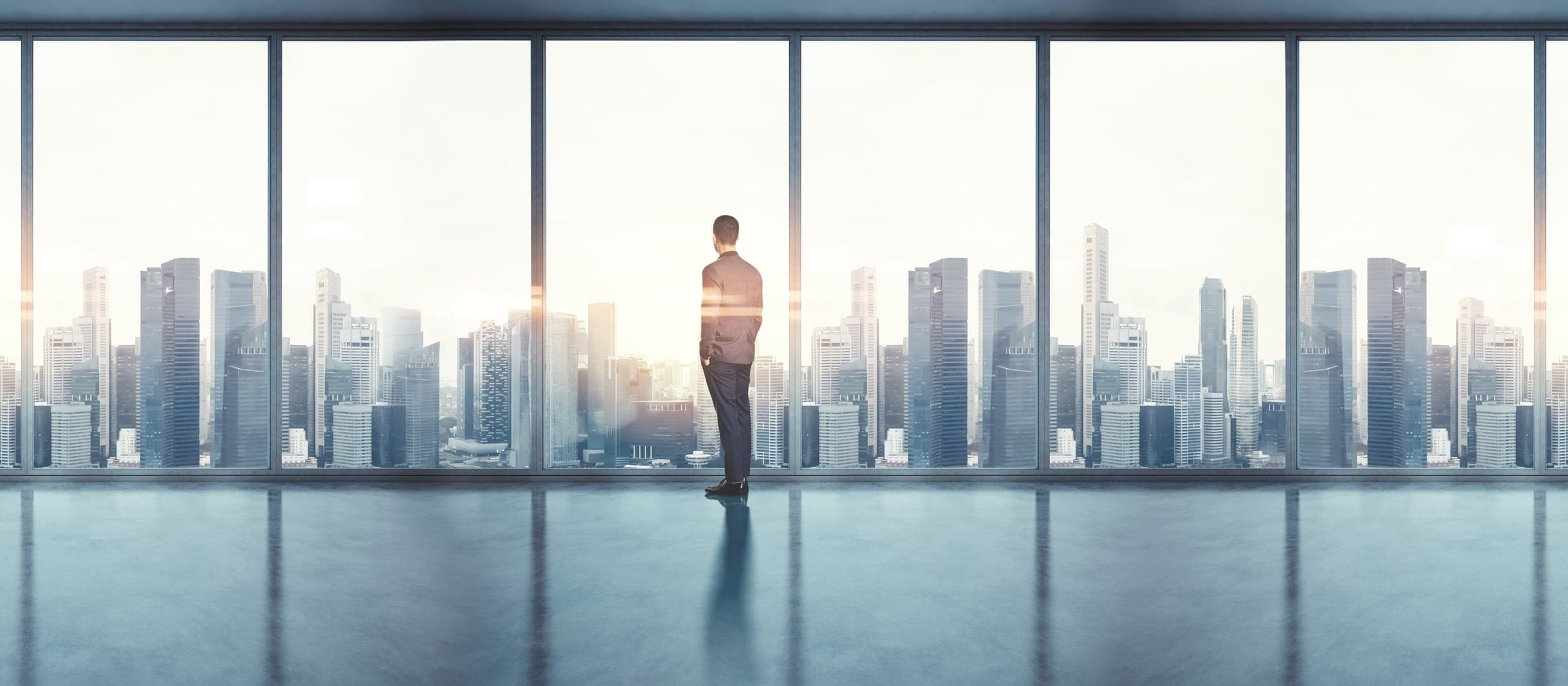 Business man gazing out of a window into a large city skyline.