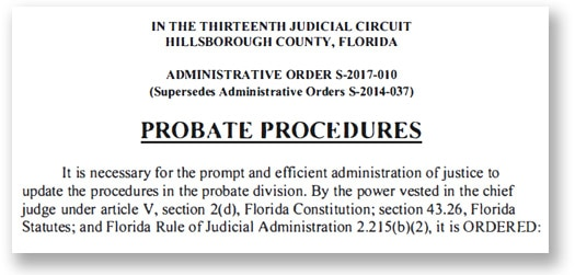 Hillsborough County Probate Court form with the following title, Thirteenth Judicial Circuit Hillsborough County, Florida. Underneath the title is the description of the court's probate process.
